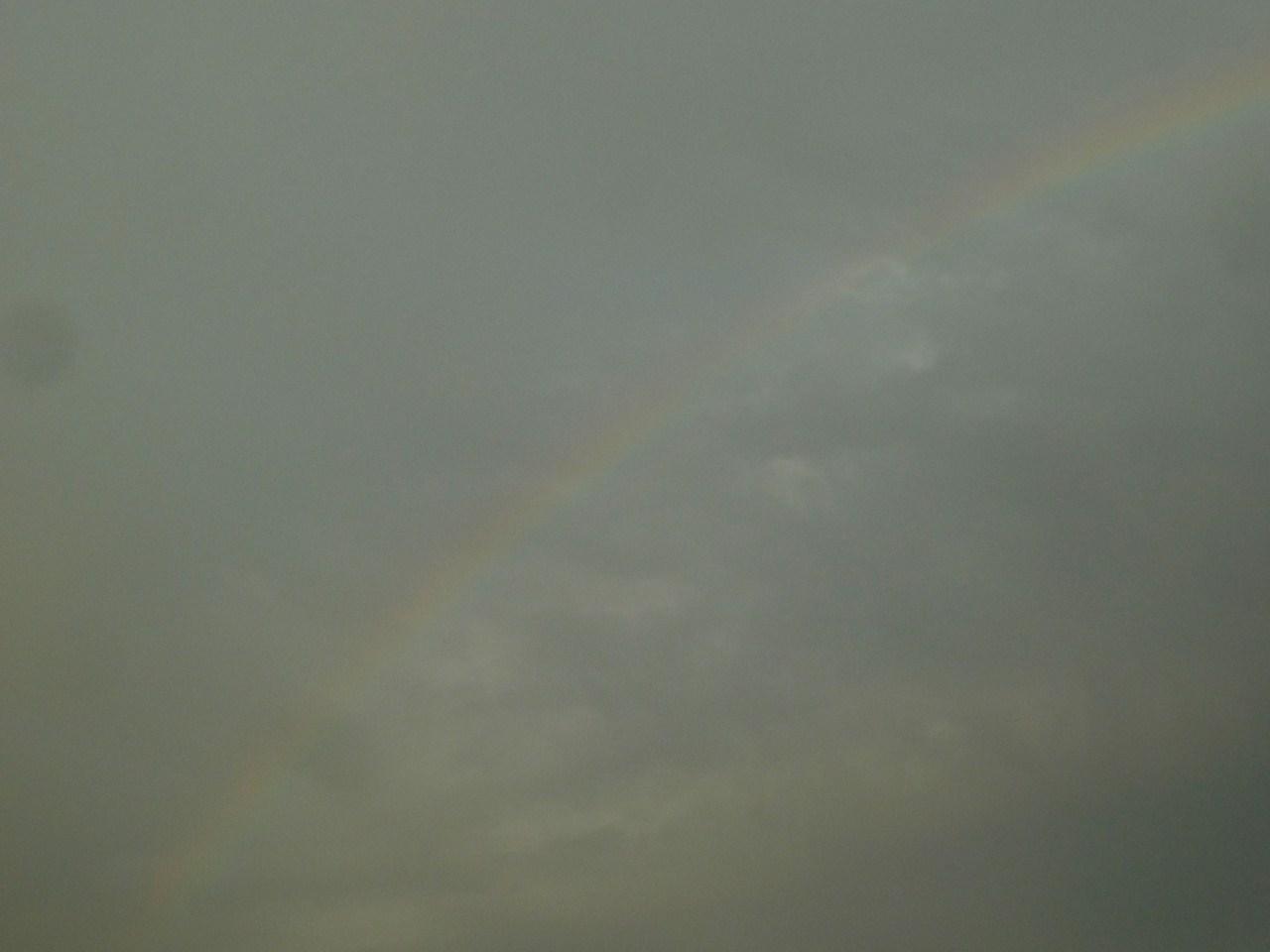 http://www.shintoko.jp/engblog/archives/images/2012/04/120408_rainbowdoha924.jpg