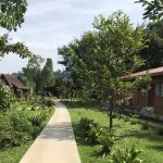 近郊のジャングル!タマンヌガラ旅行1日目
