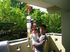 090503_kazokoinobori02.jpg