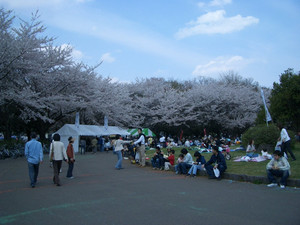 070408_tokorozawafesthival01s.jpg