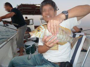 111028_qatarfishing936.jpg