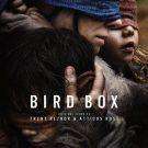 終末ホラーの「バードボックスBird Box」